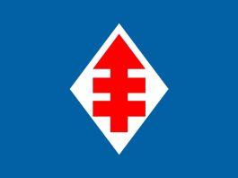 Carta abierta de militante, previo a la Junta Nacional del PDC. / Imagen: Bandera del partido, uso bajo licencia de Wikimedia Commons.